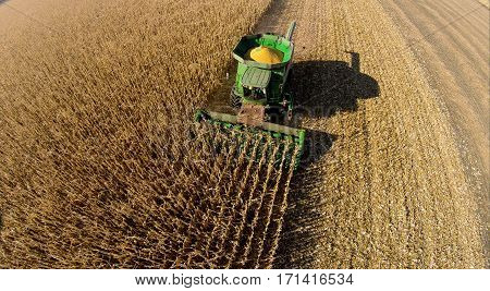 Aerial photo of a combine harvesting corn