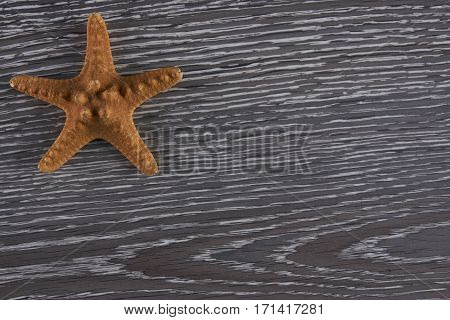 starfish on a wooden background Top view with copy spase