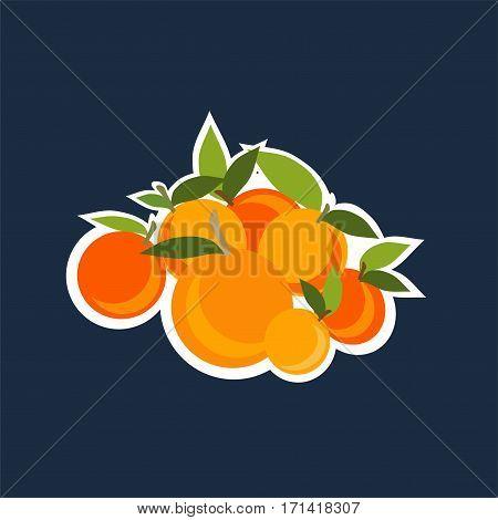 Mandarin set. Vector illustration on black background