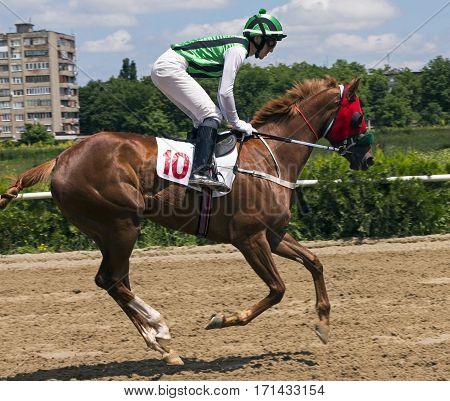 Horse racing for the traditional prize Evtushenko in Nalchik,Caucasus,Russia.