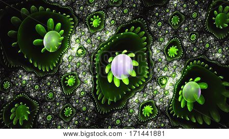 Flower in drop. Lily. 3D surreal illustration. Sacred geometry. Mysterious psychedelic relaxation pattern. Fractal abstract texture.