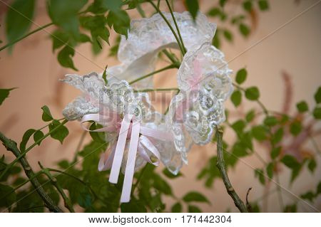 Wedding garter on the plant bride's morning fees.