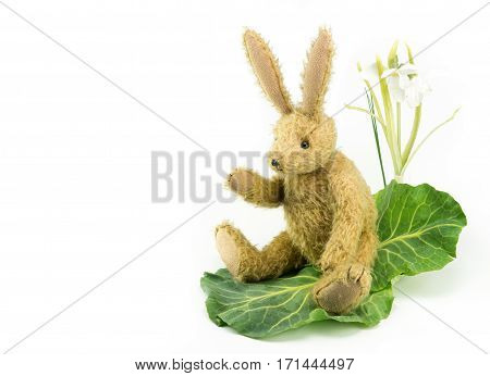 Waving Bunny Rabbit Vintage Soft Toy. Copy Space.