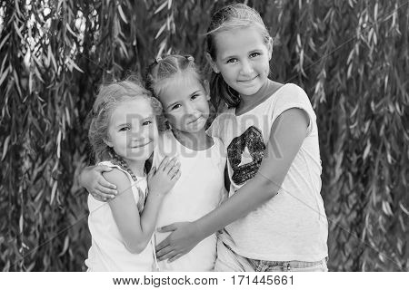 portrait of three young cousins on willow background in summer ( black and white )
