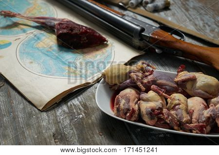 Hunting equipment and hunting trophies on old wooden background