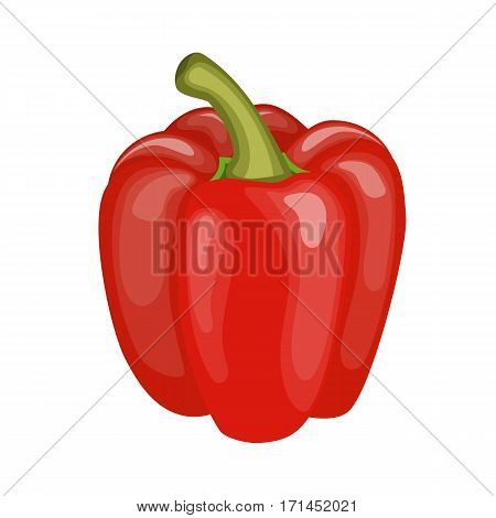 Fresh red pepper vegetable isolated icon. pepper for farm market, vegetarian salad recipe design. vector illustration in flat style