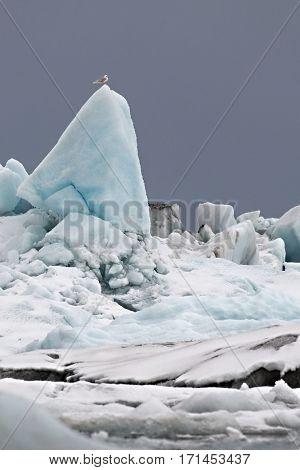 Glacial lake in Jokulsarlon, Icelandic landscape