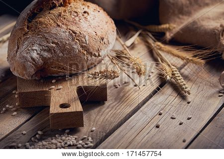 Fresh multigrain crusty bread and wheat ears on a rustic wooden table. Bakery and grocery food store concept.