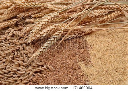 Picture Of Wholemeal Pasta From Organic Grain, Cereal Flour, Wheat Germ And Ears Of Wheat On A Rusti