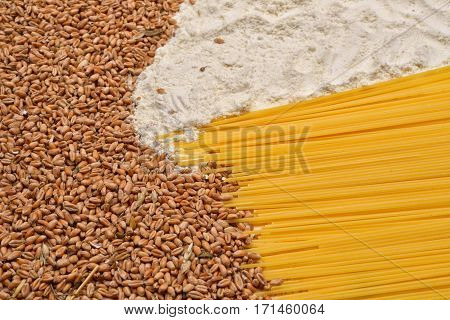 Different Raw Macaroni, Wheat And White Flour. Raw Material And Finished Product Pasta. Healthy Food