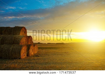 Sunset over farm field with hay bales in nature
