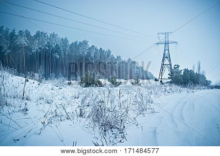 Reliance Electric transmission line on the edge of the pine winter forest