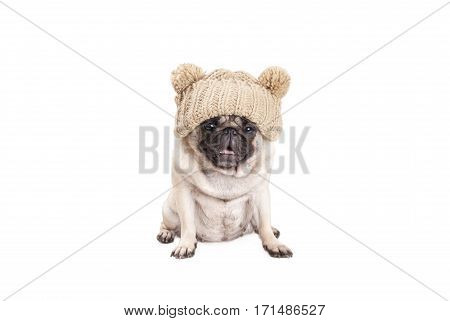 adorable pug puppy dog sitting down and panting wearing knitted hat isolated on white background