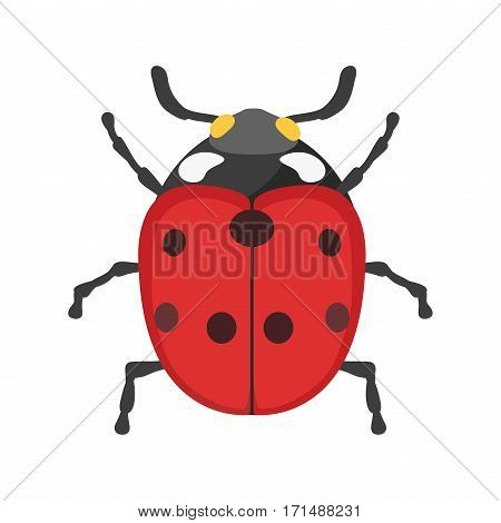 Insect ladybug icon flat isolated on white background. Nature flying butterfly beetle vector ant. Wildlife spider grasshopper or mosquito cockroach animal illustration.