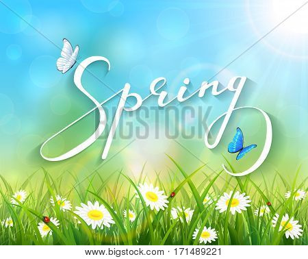 Lettering Spring with sunny natural background, butterflies flying above the grass with ladybugs and flowers, illustration.