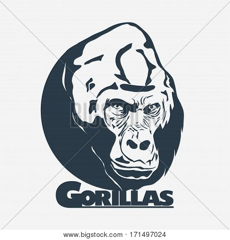 Gorilla head silhouette, Monkey logo design template, vector