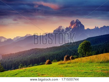 Alps mountain meadow tranquil summer view. Europe