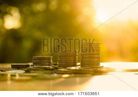 money growing with sun light in saving money and investor insurance concept over green background