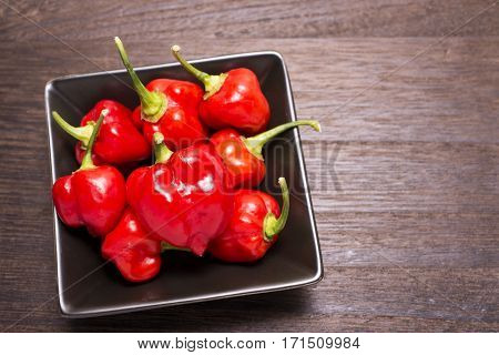 Several red habanero chilli fruit on black square plate