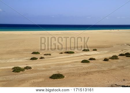 The Famous Lagoon In Risco El Paso At Playas De Sotavento, Fuerteventura