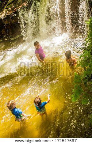 thermal river in forest, kerosene creek, rotorua, new zealand