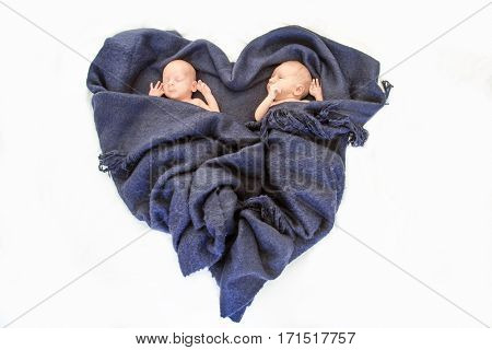 newborn twin babies portrait