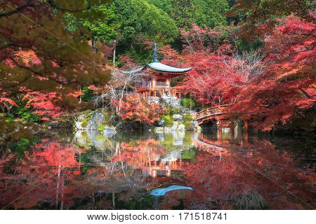Autumn park in Daigoji Temple Kyoto Japan