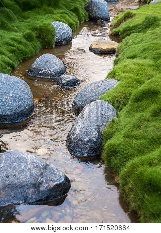 Rocks in the creek surrounded by grass.