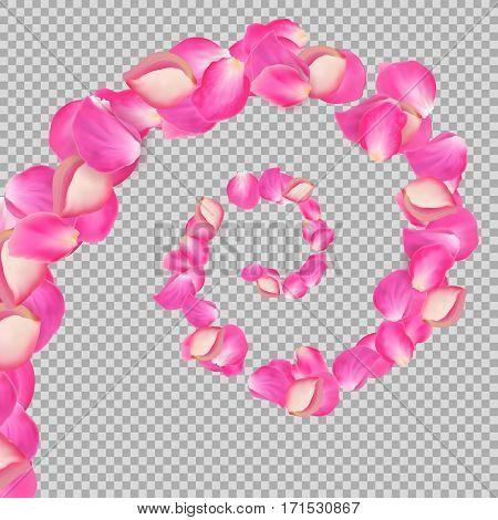 Spiral of flying rose petals. Realistic vector pink big petals on transparentt background.