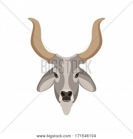 indian cattle oxen head vector illustration style Flat