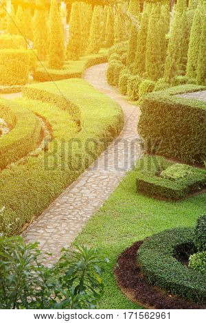 A beautiful nature path through in the tropical garden at sunrise.