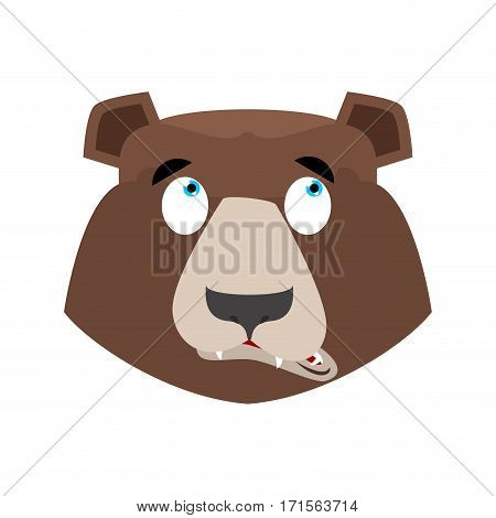 Bear Surprised Emoji. Grizzly Astonished Emotion. Face Wild Animal Isolated