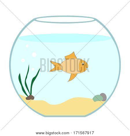 Aquarium with fish, aquarium icon, water, fish. Flat design, vector illustration, vector.