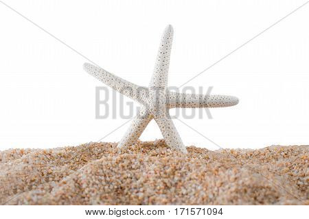 Starfish on the sand beach with copy space summer and seashore concept Isolated on white background.