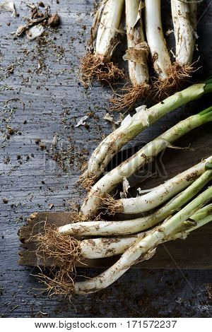 high-angle shot of some raw calcots, sweet onions typical of Catalonia, Spain, on a rustic wooden table
