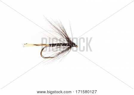Cut Out Of Insect-looking Fishing Lure