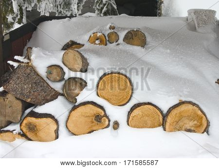 stack firewood under the snow in winter