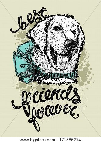Drawing the head of a Labrador dog with a bow and letters. Best friends forever, vector illustration. Print for textiles EPS10