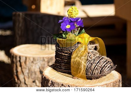 nice blue primrose in a wicker hand-knit boot with a yellow ribbon on a wooden chopping block