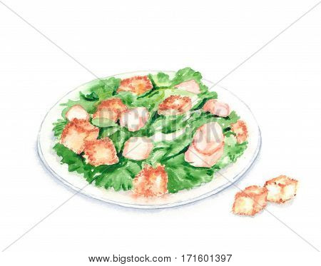 Hand drawn watercolor illustration of fresh tasty Caesar Salad on the plate with romaine lettuce, chicken, Parmesan cheese and croutons. Isolated on the white background