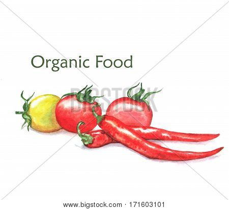 Hand-drawn watercolor food illustration of organic products: ripe cherry tomatoes and chili peppers isolated on the white background