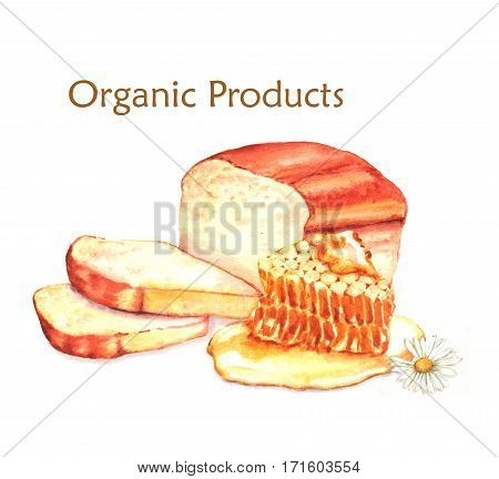 Hand-drawn watercolor food illustration of organic products: fresh bread and honey isolated on the white background