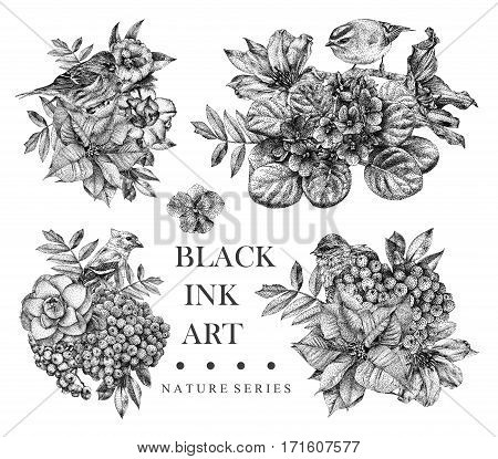 Set of compositions with dotted flowers birds and plants drawn by hand with black ink. Graphic drawing pointillism technique. Floral background in dotwork style. Black and white
