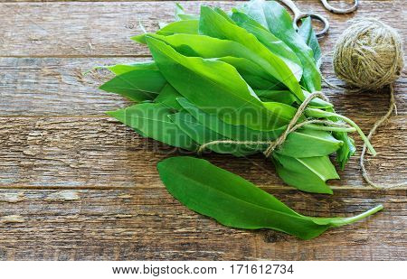 ramson bear garlic bunch tied with rope a wooden background.
