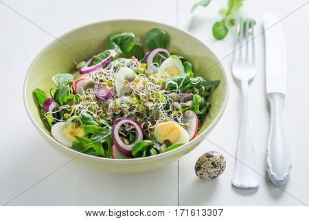 Fresh Green Salad With Onion, Quail Egg And Sprouts