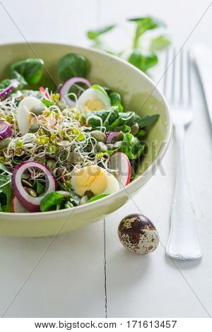 Slimming Green Salad With Onion, Quail Egg And Sprouts