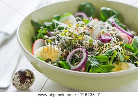 Homemade Green Salad With Onion, Quail Egg And Sprouts