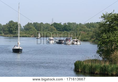 NetherlandsThe Biesboschjune 2016 : The Biesbosch National Park consists of a rather large network of rivers and smaller and larger creeks with islands.