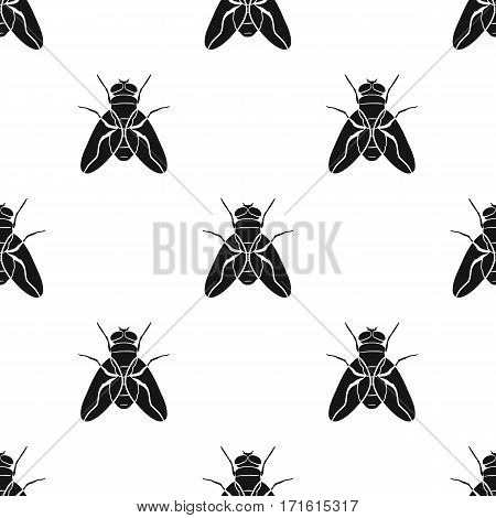 Fly icon in black design isolated on white background. Insects pattern stock vector illustration.