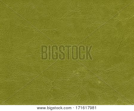 Yellow leather texture. Background and texture for design